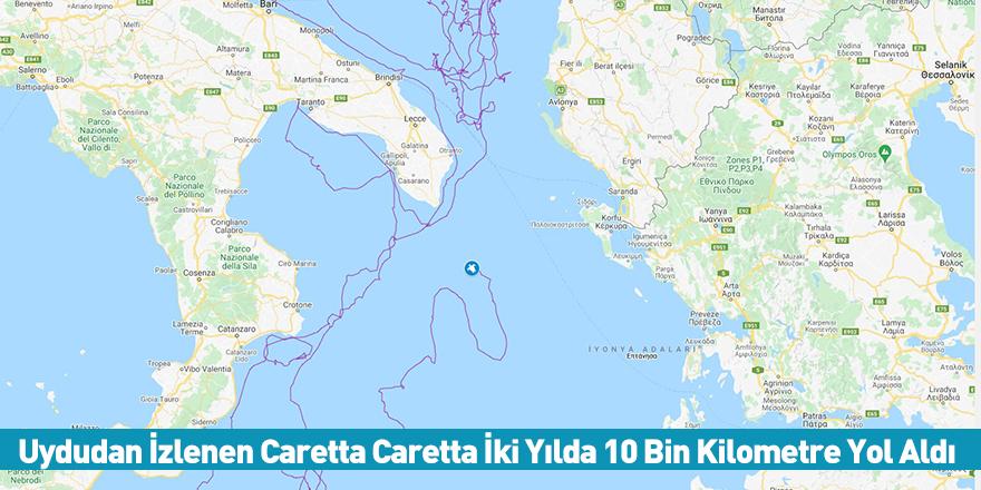 Uydudan İzlenen Caretta Caretta İki Yılda 10 Bin Kilometre Yol Aldı