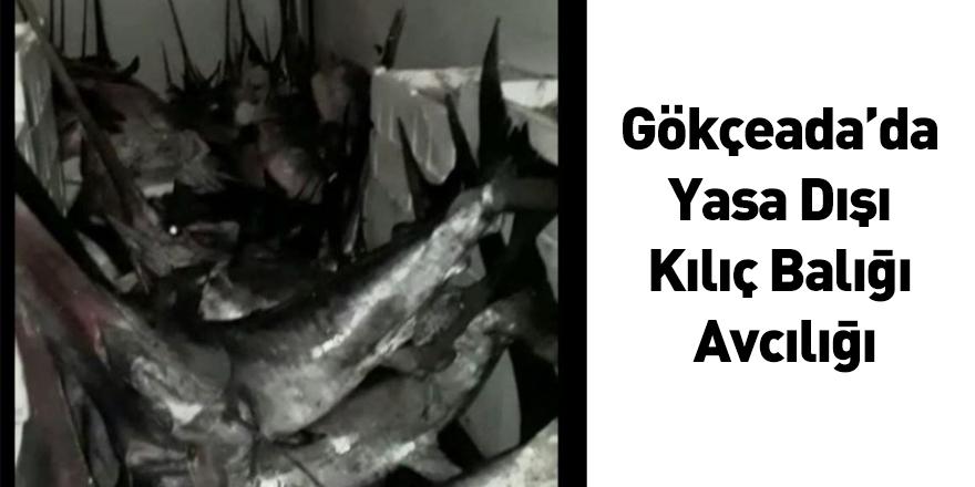 Gökçeada'da Yasa Dışı Kılıç Balığı Avcılığı