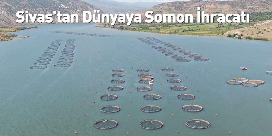 Sivas'tan Dünyaya Somon İhracatı