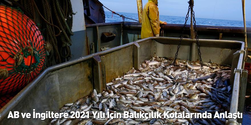 AB ve İngiltere 2021 Yılı İçin Balıkçılık Kotalarında Anlaştı