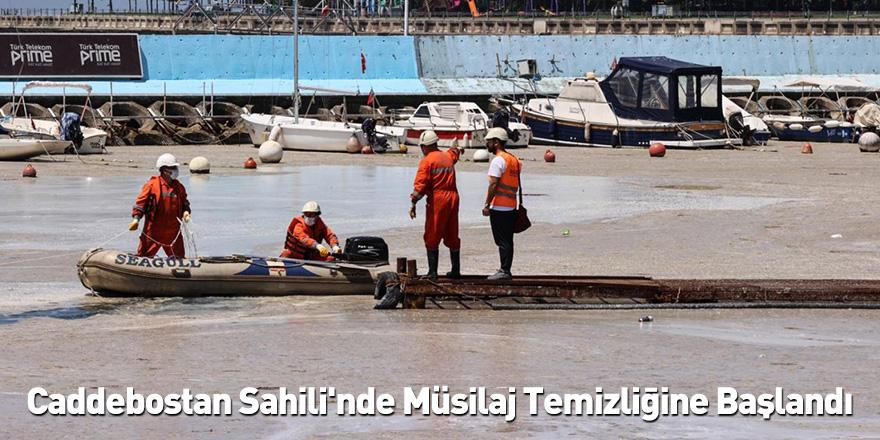 Caddebostan Sahili'nde Müsilaj Temizliğine Başlandı