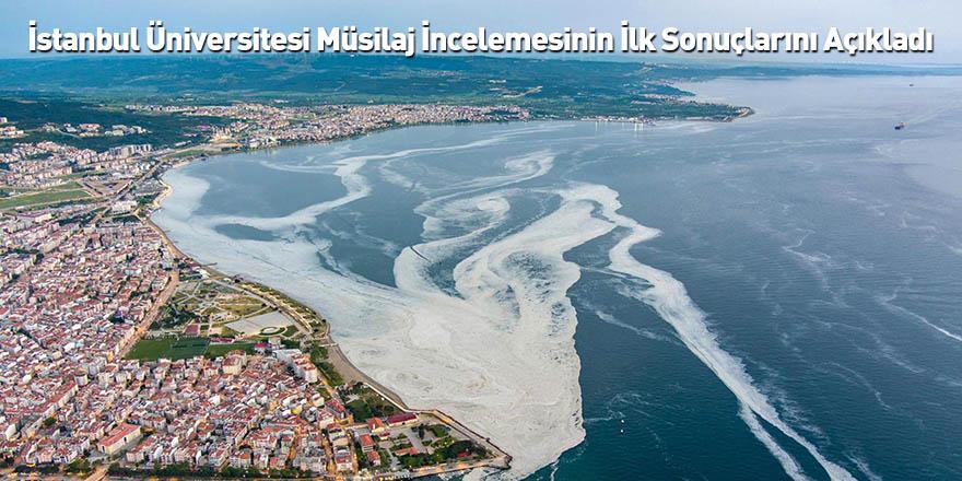 İstanbul Üniversitesi Müsilaj İncelemesinin İlk Sonuçlarını Açıkladı