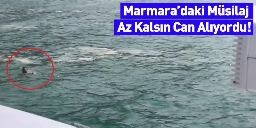 Marmara'daki Müsilaj Az Kalsın Can Alıyordu