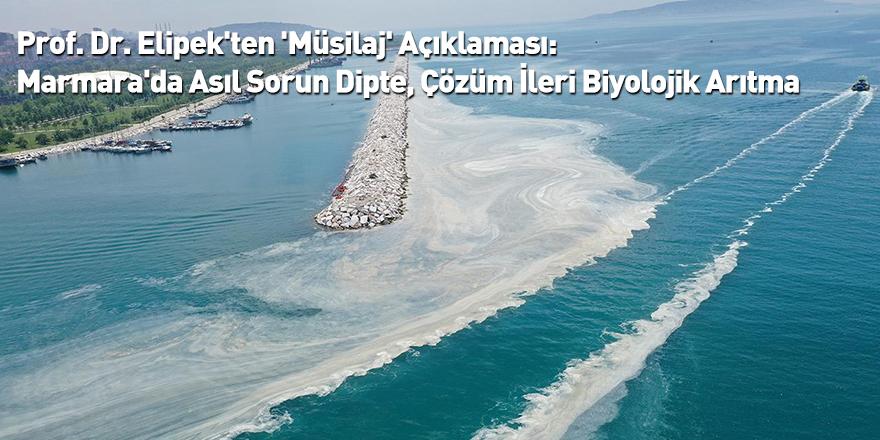 Prof. Dr. Elipek'ten 'Müsilaj' Açıklaması: Marmara'da Asıl Sorun Dipte, Çözüm İleri Biyolojik Arıtma