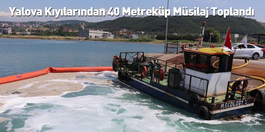 Yalova Kıyılarından 40 Metreküp Müsilaj Toplandı
