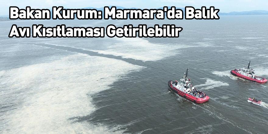 Bakan Kurum: Marmara'da Balık Avı Kısıtlaması Getirilebilir