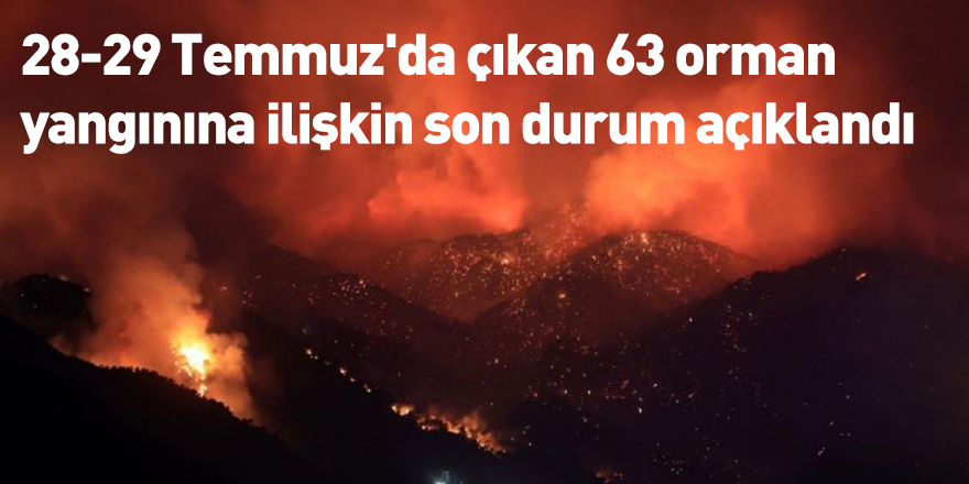 28-29 Temmuz'da çıkan 63 orman yangınına ilişkin son durum açıklandı