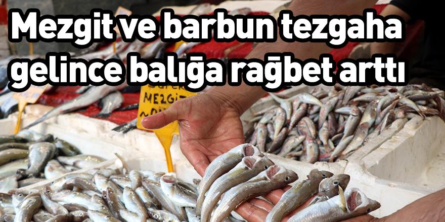 Mezgit ve barbun tezgaha gelince balığa rağbet arttı