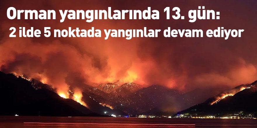 Orman yangınlarında 13. gün: 2 ilde 5 noktada yangınlar devam ediyor