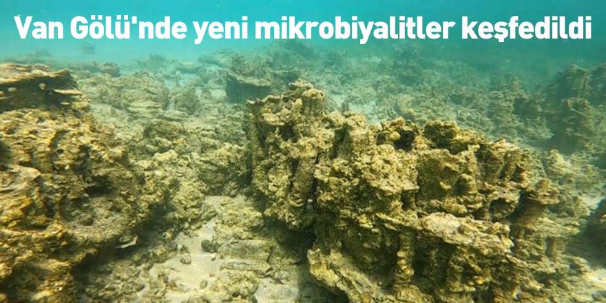 Van Gölü'nde yeni mikrobiyalitler keşfedildi