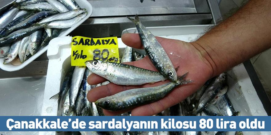 Çanakkale'de sardalyanın kilosu 80 lira oldu