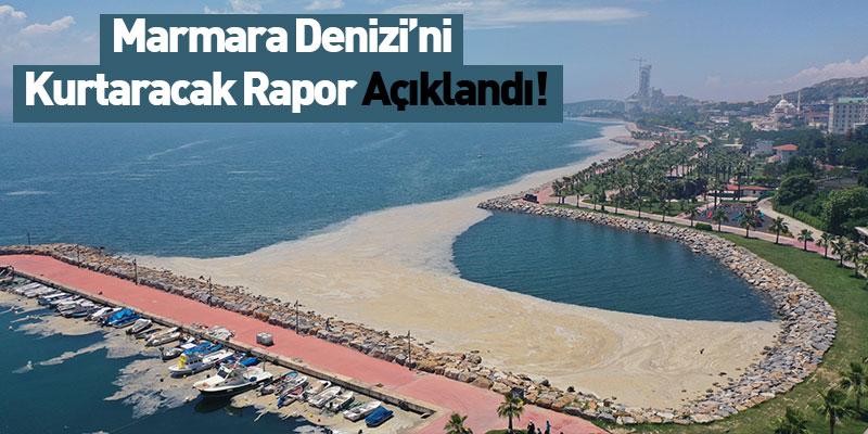 Marmara Denizi'ni Kurtaracak Rapor Açıklandı!