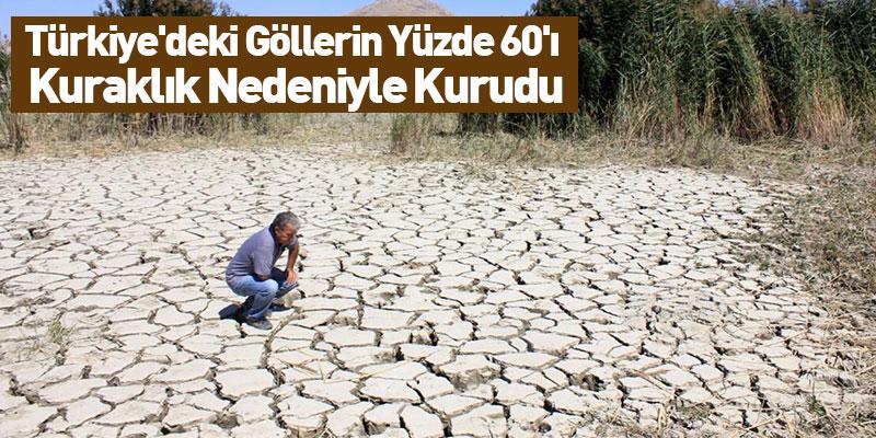 Türkiye'deki Göllerin Yüzde 60'ı Kuraklık Nedeniyle Kurudu