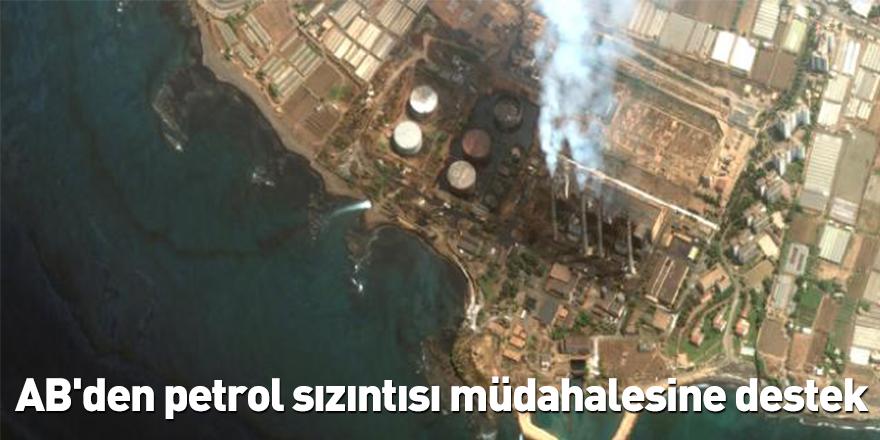AB'den petrol sızıntısı müdahalesine destek
