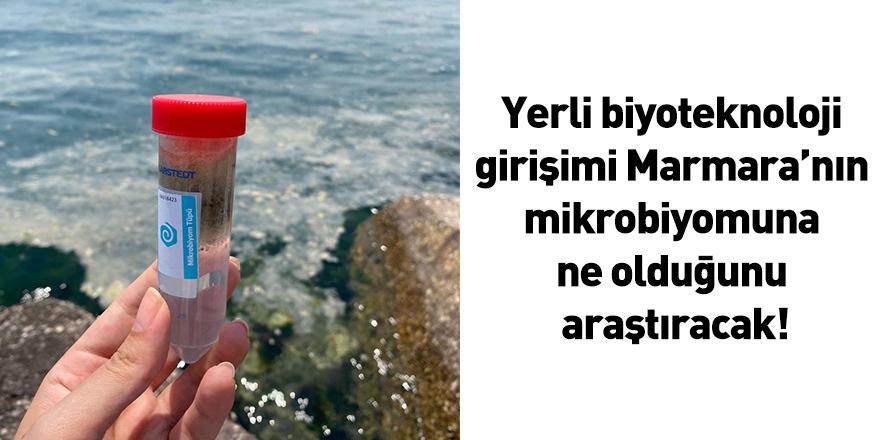 Yerli biyoteknoloji girişimi Marmara'nın mikrobiyomuna ne olduğunu araştıracak!