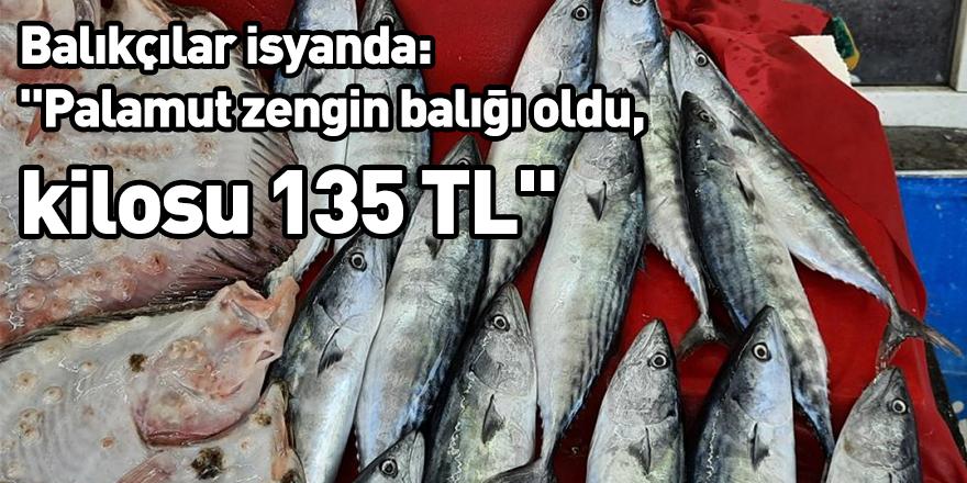 """Balıkçılar isyanda: """"Palamut zengin balığı oldu, kilosu 135 TL"""""""