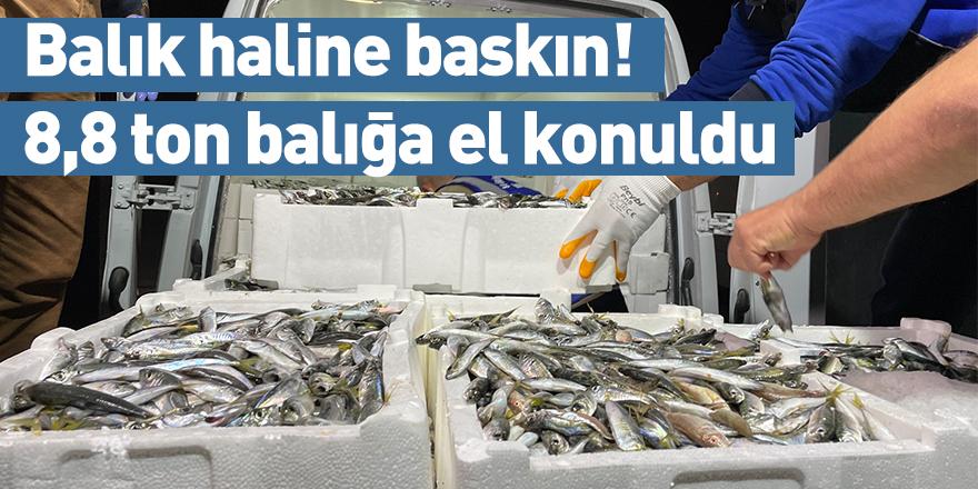 Balık haline baskın! 8,8 ton balığa el konuldu