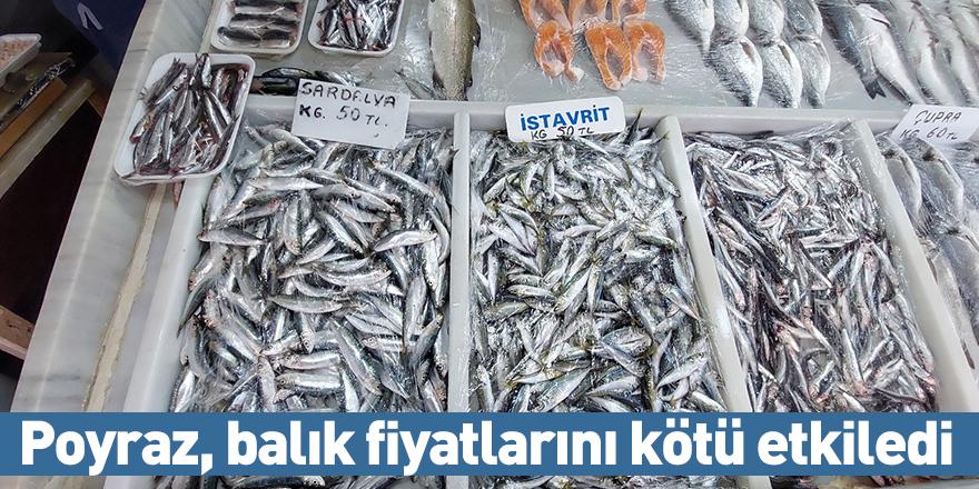 Poyraz, balık fiyatlarını kötü etkiledi
