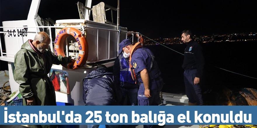 İstanbul'da 25 ton balığa el konuldu