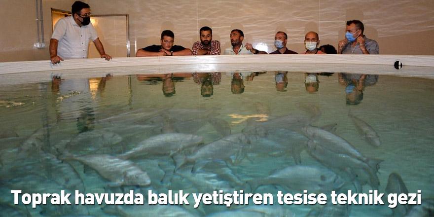 Toprak havuzda balık yetiştiren tesise teknik gezi düzenlendi