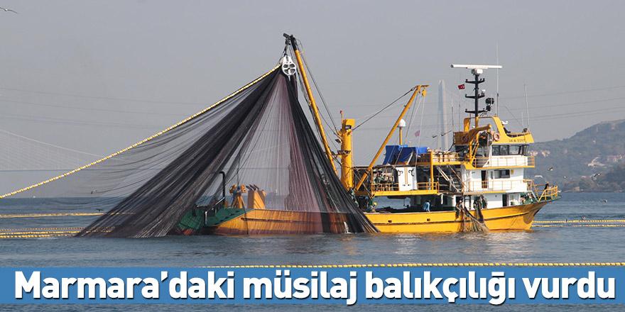 Marmara'daki müsilaj balıkçılığı vurdu
