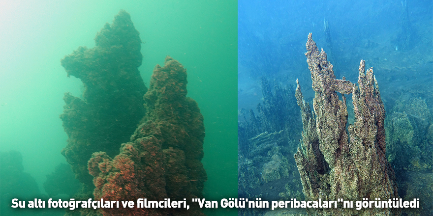 """Su altı fotoğrafçıları ve filmcileri, """"Van Gölü'nün peribacaları""""nı görüntüledi"""