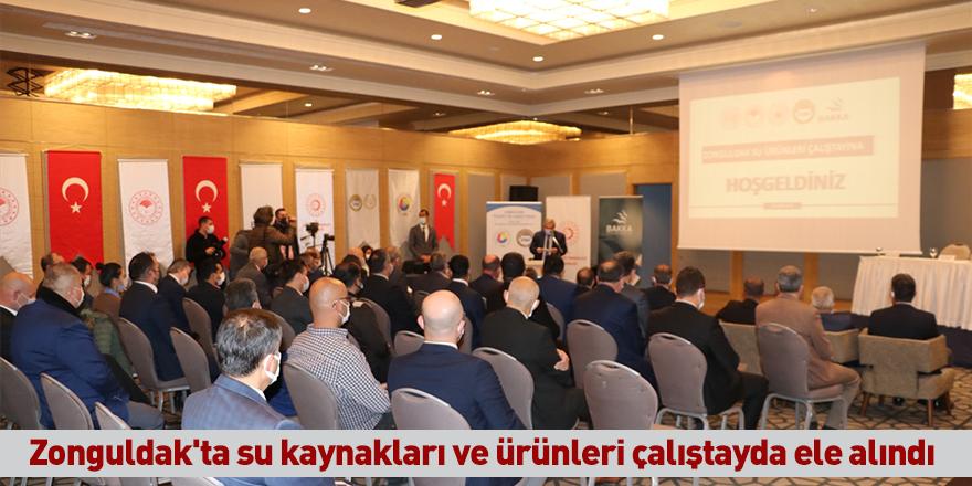 Zonguldak'ta su kaynakları ve ürünleri çalıştayda ele alındı