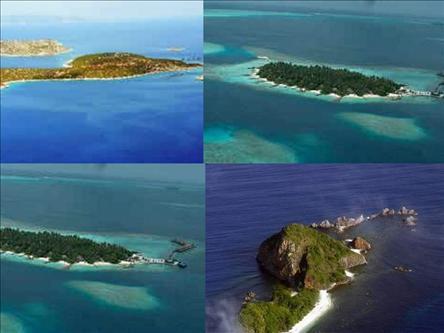 Çin, 176 adayı satışa çıkarıyor