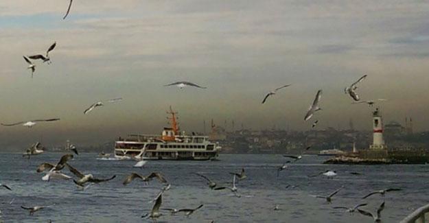 Marmara Denizi korumaya alınmalı, yoksa...