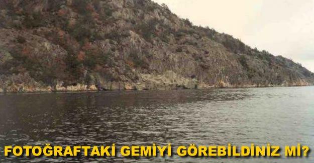 Denizlerin efendilerinin şaşırtan kamuflajları