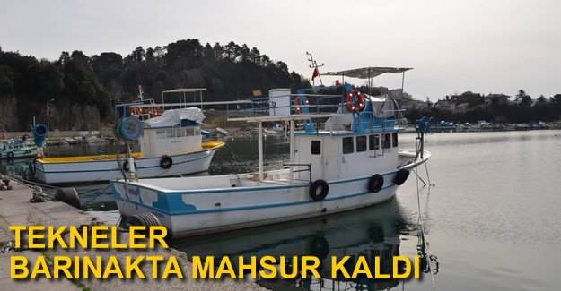 Alaplı Balıkçı Barınağı kumla doldu, tekneler mahsur kaldı