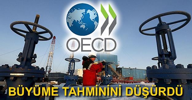 OECD, 2016 için küresel büyüme tahminini düşürdü