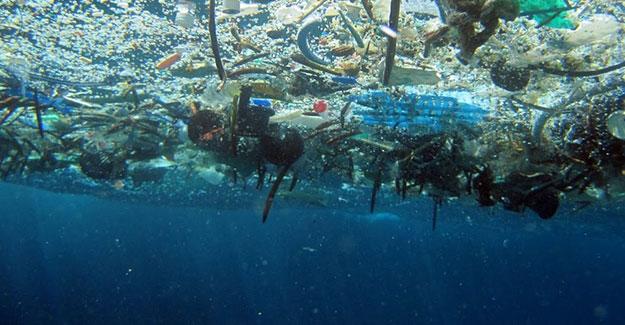 Okyanusları bekleyen büyük tehlike: 2050 yılında...