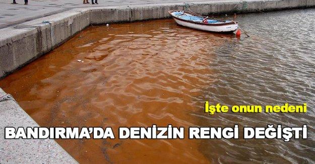 Bandırma'da denizin rengi değişti