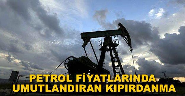 Uluslararası Enerji Ajansı'ndan petrol fiyatı açıklaması