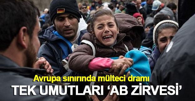 Avrupa sınırında mülteci dramı