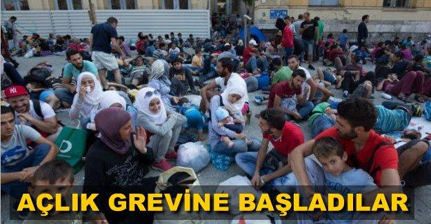 Göçmenler Midilli'de açlık grevine başladı