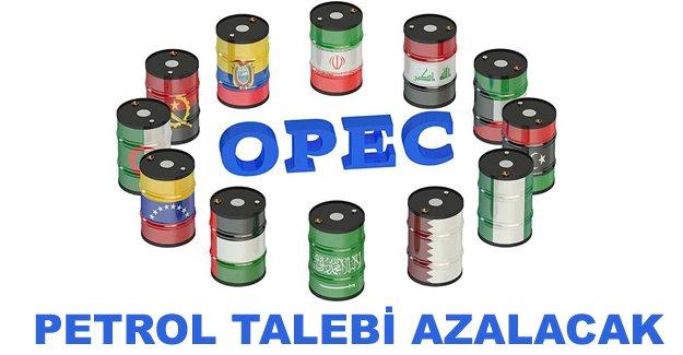 OPEC: Petrol talebi azalacak