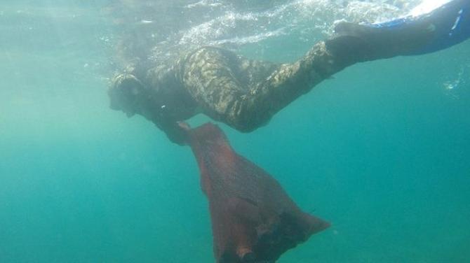 'Denize Mavi Yakışır' kampanyası devam ediyor