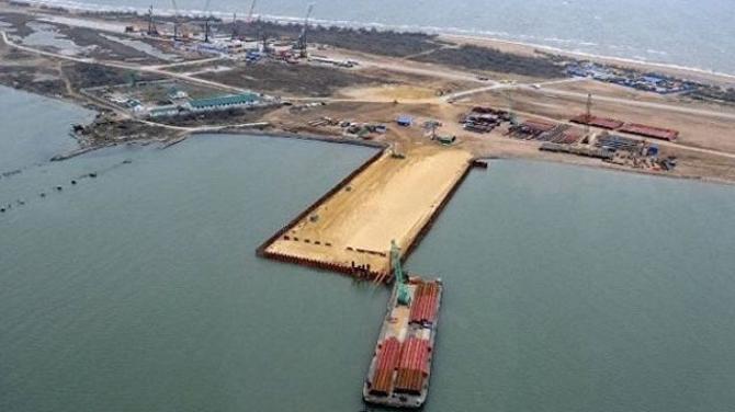 Kerç Köprüsü inşaatı deniz canlılarını tehdit ediyor