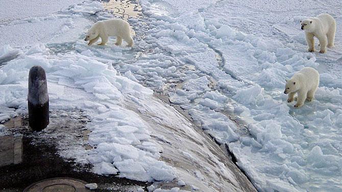 Kuzey Kutbu için yeni AB politikası