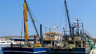 Balıkçılar, liman sorunları çözülsün istiyor