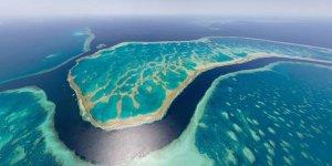 Büyük Set Resifi'ndeki yenilenme azaldı