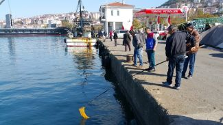 Balıkların şoka girmesi vatandaşa yaradı