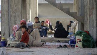 7 bin 741 mülteci Ceraplus'a geri döndü