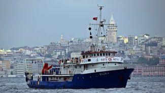 Karadeniz'in incisi hamsinin geleceği araştırılacak