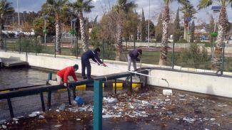Teos Marina'da kanal temizliği yapıldı