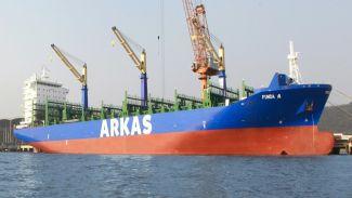 Dünyanın en büyük 20'nci filosu: Arkas Denizcilik