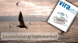 Vira Dergisi yeni sayısında Marmara Denizi'ne dikkat çekiyor