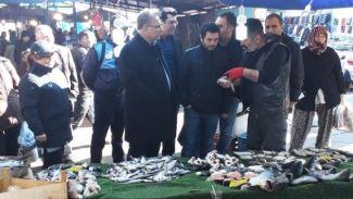 Sardalya balıklarını hamsi diye satmaya kalkıştılar